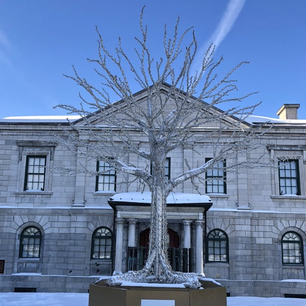 visiting montreal in winter