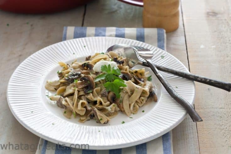 Vegetarian Mushroom Stroganoff