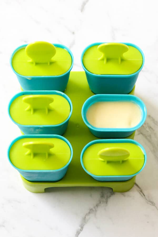 a popsicle mould tray.