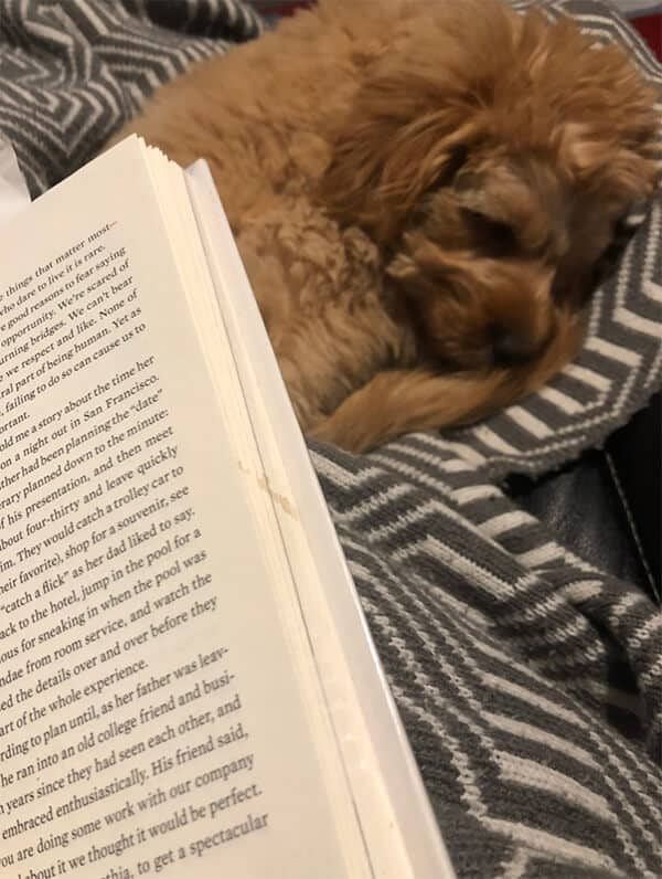 book sitting on a lap with a dog sleeping behind.