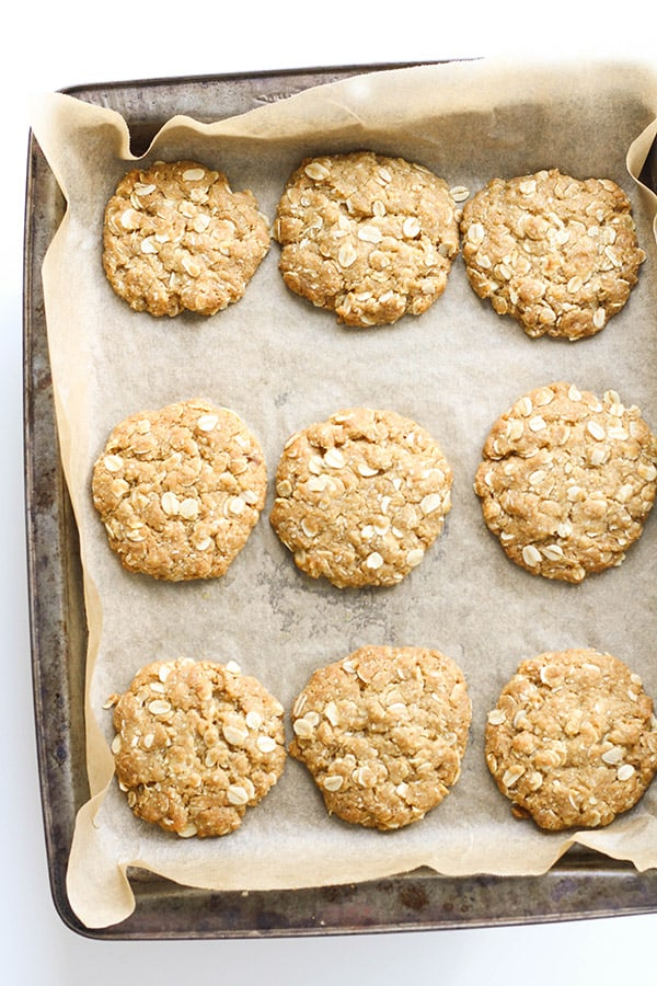 anzac biscuits on a baking tray.