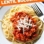 "image of finished dish with text overlay ""quick & easy lentil bolognese""."